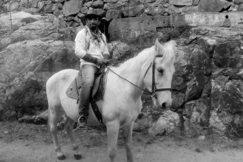 Jerome Laverda magnétiseur équin