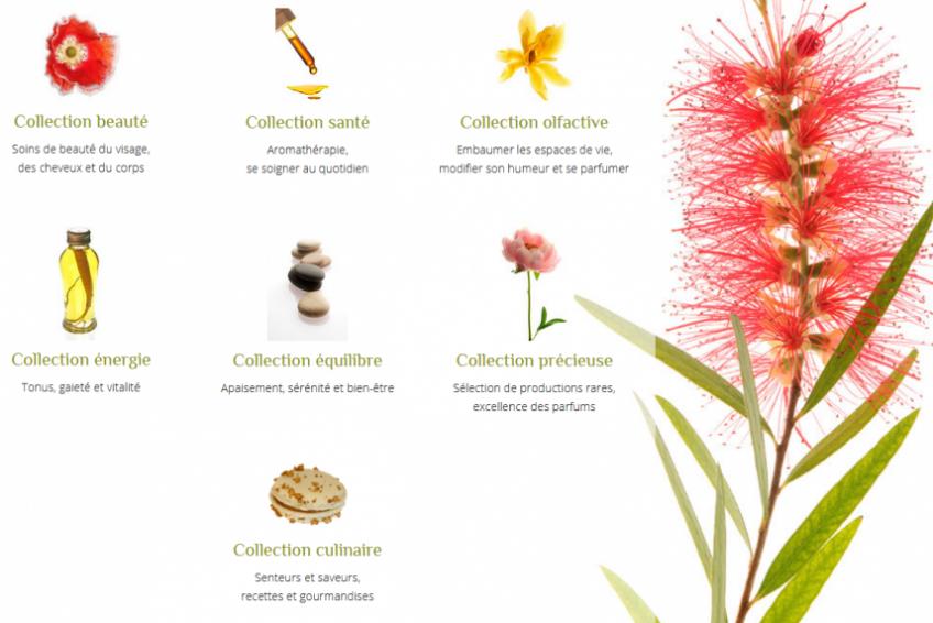Gamme de produits naturels et bio - Commandez en ligne nos huiles essentielles è-sens en Ardèche