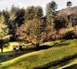 roulotte Le Mas du Pestrin - location vacances Ardèche