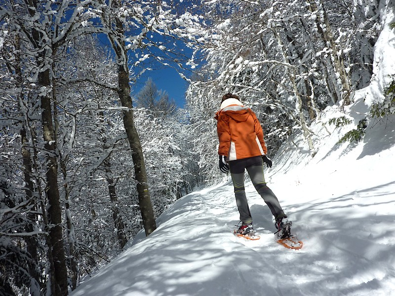 Ardèche randonnée en raquette - suc de bauzon