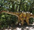 grotte Ardèche - Aven Marzal zoo préhistorique