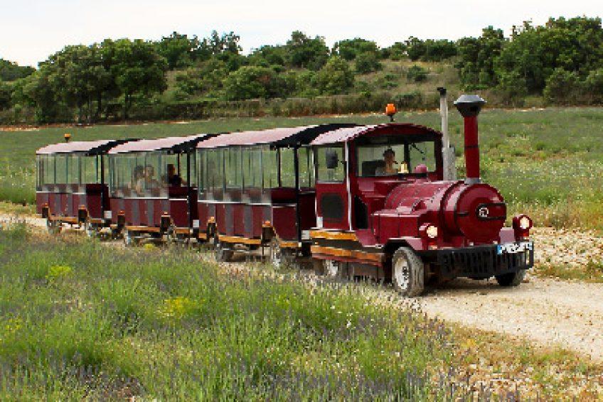 Domaine Lavandaïs - Musée Maison de la lavande - visite en train